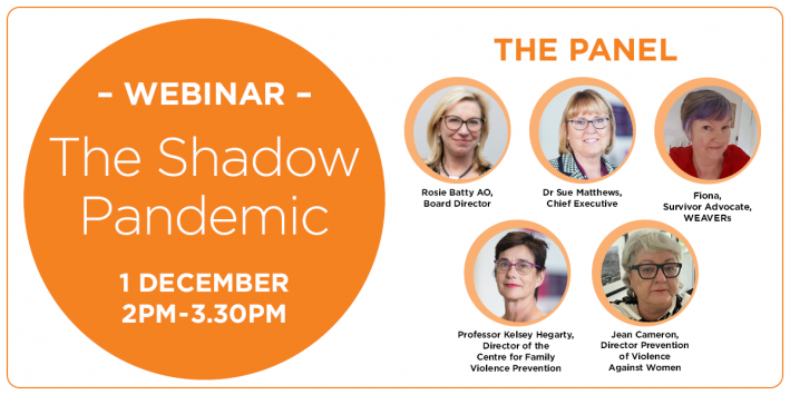 The Shadow Pandemic Webinar