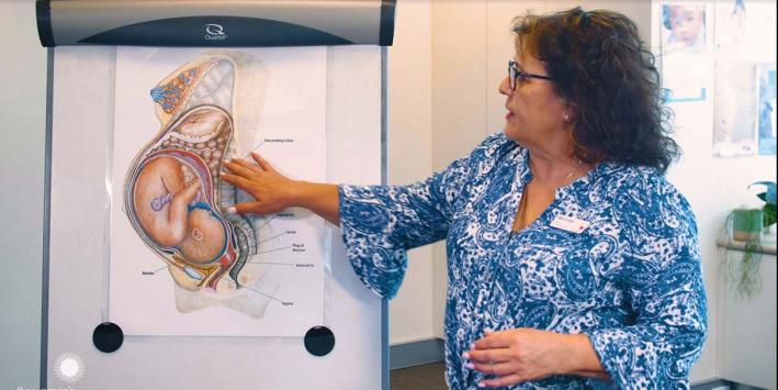 Childbirth educator with diagram